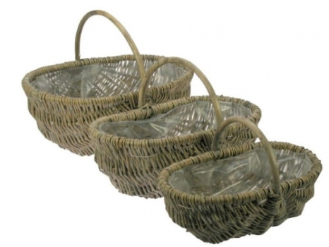 walnuss seifersdorfer runde juglans regia co 15ltr 200 250 cm pflanzen obstb ume. Black Bedroom Furniture Sets. Home Design Ideas