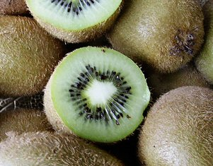 Häberli-Obst: Kiwi chinensis Solissimo renact. im Container 7,5 ltr